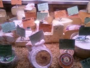 MSCM Cheese